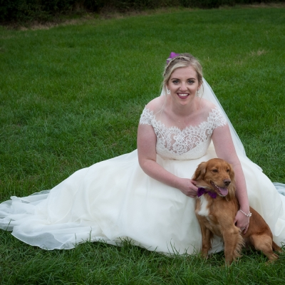 dogs-at-weddings