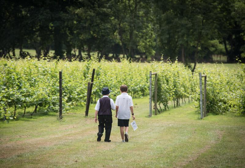 froginwell-vineyard-photograpy