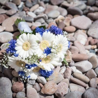 flowers-on-the-beach